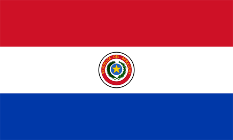 Vaccination Paraguay i Stockholm